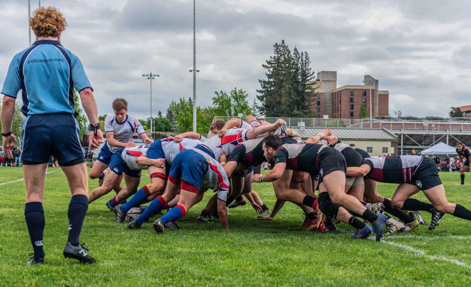 Solo Creative Services Rugby Photo - Website Design & Photography Based in Chico, CA